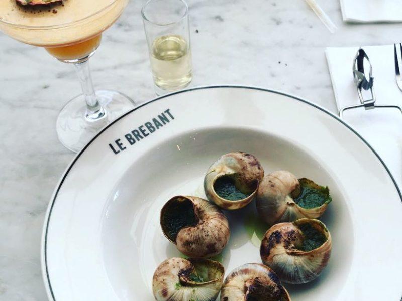 Escargot in a plate